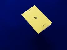 Laurence-Chene-Editions-Loco-Cpif1